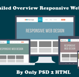 Detailed-Overview-Responsive-Web-Design